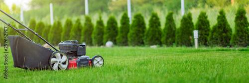 Valokuvatapetti Lawn mower cutting green grass