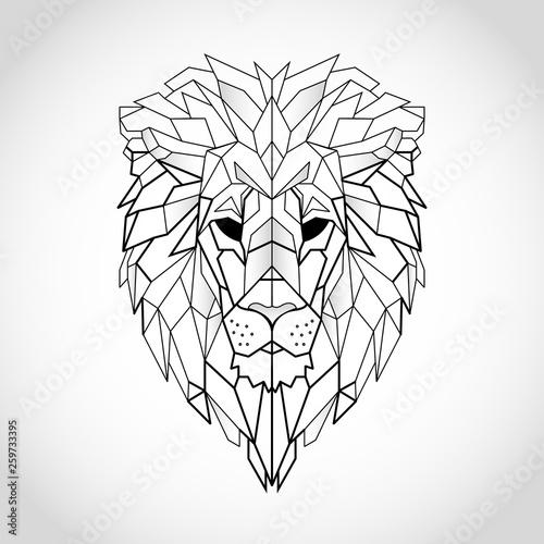 Obraz na płótnie African lion head icon