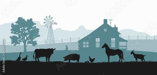 Fotografia Silhouettes of farm animals