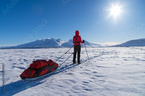Female cross country skier with sled (pulka) on a lake enjoying the view at the Ahkka mountain Poster Mural XXL