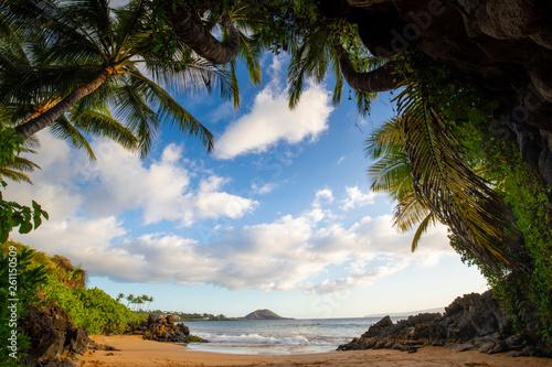 Stampa su Tela Maui Sunset beach cove