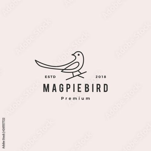 Photo magpie bird logo vector icon illustration