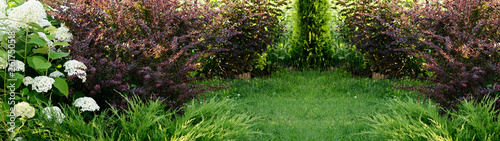 Fotografiet Summer garden with flowers bushes and green grass