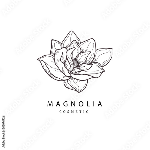 Fotografie, Obraz Floral hand drawn design elements