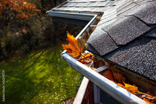 Fotografering Autumn leaves in a rain gutter on a roof