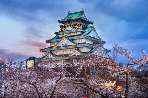 Fototapeta premium Zamek Osaka i kwiat wiśni wiosną. Sakura w Osace w Japonii.