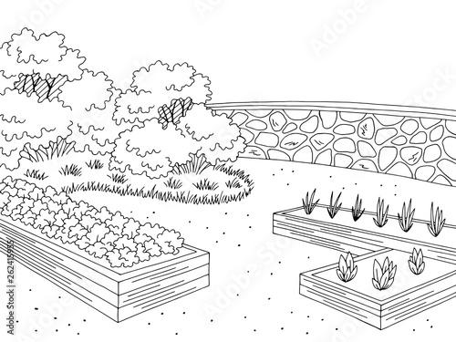 Obraz na płótnie Market garden graphic black white landscape sketch illustration vector