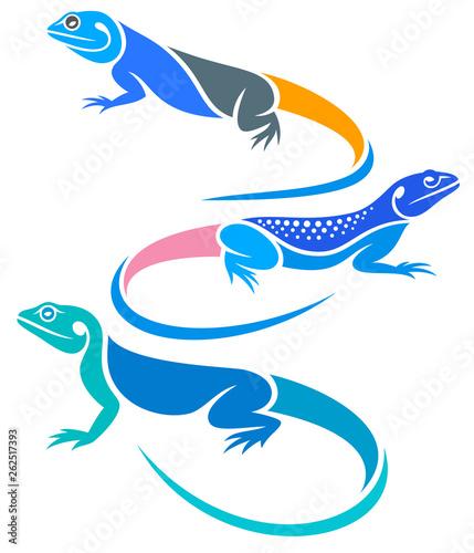 Fotografie, Obraz Stylized Lizards - Agamas