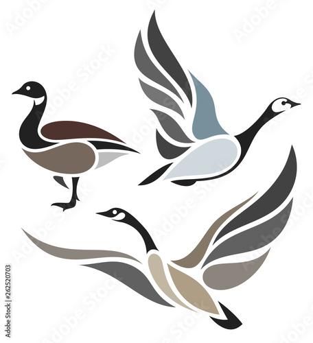 Obraz na płótnie Stylized Birds - Wild Geese
