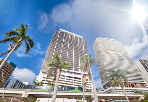 Tableau sur Toile Buildings and monorail of Downtown Miami with palms on a sunny day