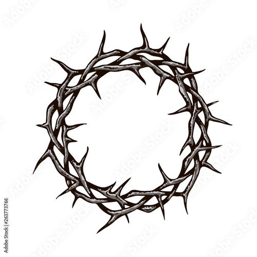 black crown of thorns image isolated on white background Fotobehang
