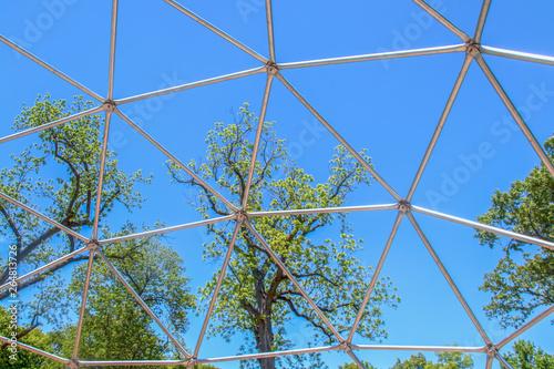 Geodesic dome frame climber - metal - Tall spring trees viewed through section w Tapéta, Fotótapéta