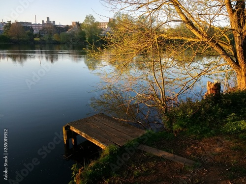 Landscape tranquil early Summer beautiful lake view of calm water with tree and Fototapeta