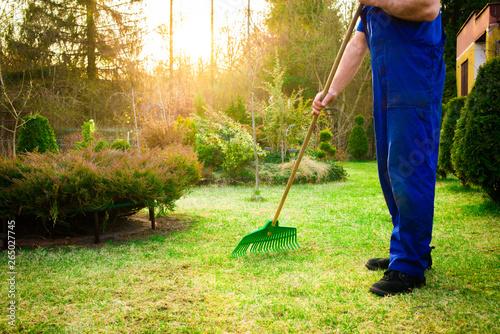 Raking grass in the garden Fototapeta