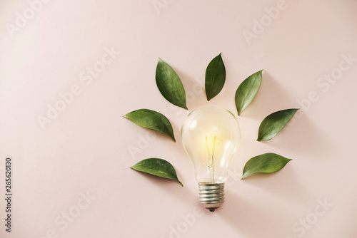 Fotografia Eco green energy concept bulb, lightbulb leaves on pink background