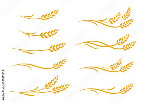 set of hand drawn doodle wheat ears Tapéta, Fotótapéta