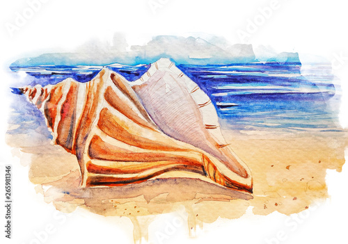 Beautiful seashell on the beach watercolor illustration Fototapet