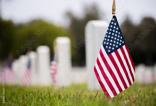 Fotografie, Obraz Small American flags and headstones at National cemetary- Memorial Day display