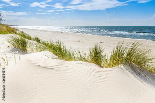 Fototapeta Pusta dzika plaża koło Mrzeżyna nad Bałtykiem w Polsce na wymiar