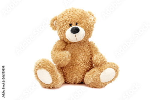 Teddy bear Fototapet