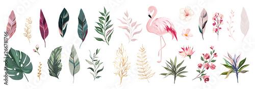 Tropikalny wektor liść ze złota, kwiatów i Czerwonak. zestaw ilustracji kwiatów. egzotyczne liście na białym tle. kolekcja z kwiatami na zaproszenie