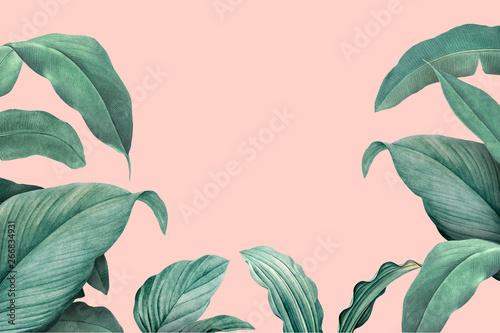 Tropical leaves frame Fototapet