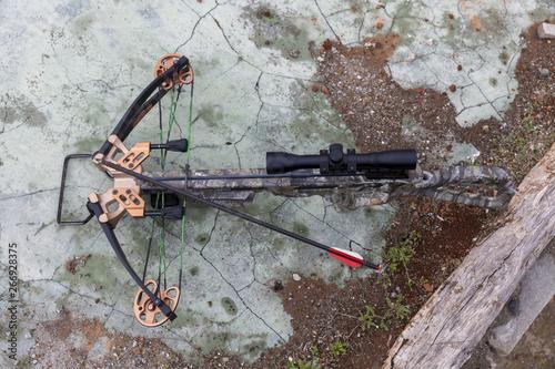 Obraz na plátně hunting crossbow with an arrow