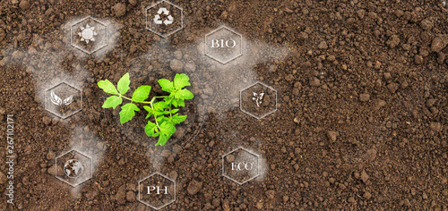 Fotografía Smart farming with IoT, futuristic agriculture concept, cultivating ecological a