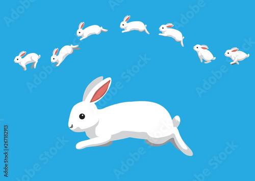 White Rabbit Jumping Motion Animation Sequence Cartoon Vector Illustration Fototapete