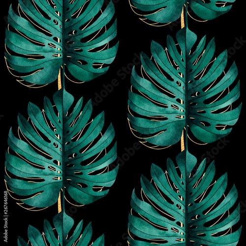 Fototapeta Tropikalny wzór z egzotycznych monstera roślin p