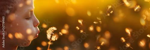 Cute little boy blows a dandelion on the summer sunset.