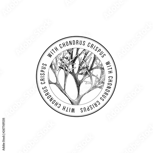 Wallpaper Mural Round emblem with hand drawn chondrus crispus algae