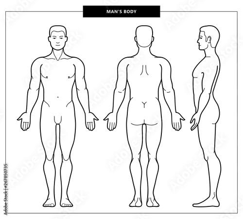 Foto men's body and anatomy