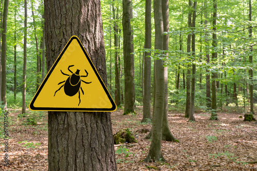 Fotografia Warning sign beware of ticks in infested area in the green forest