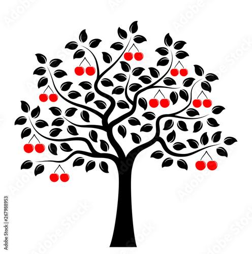 cherry tree Fototapet
