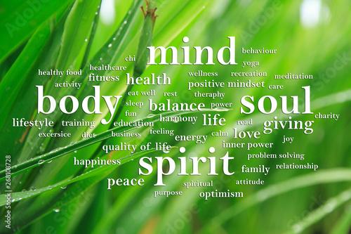 Billede på lærred Body Mind Soul Spirit, Motivational Words Quotes Concept
