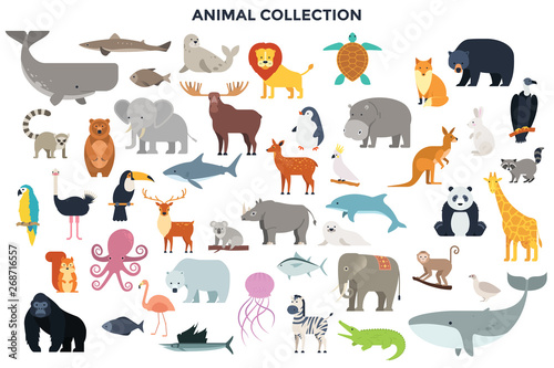 Big collection of wild jungle, savannah and forest animals, birds, marine mammals, fish. Set of cute cartoon characters isolated on white background. Colorful vector illustration in flat style.