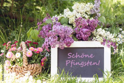 Wallpaper Mural Tafel mit Text Schöne Pfingsten mit Flieder und Gänseblümchen im Garten