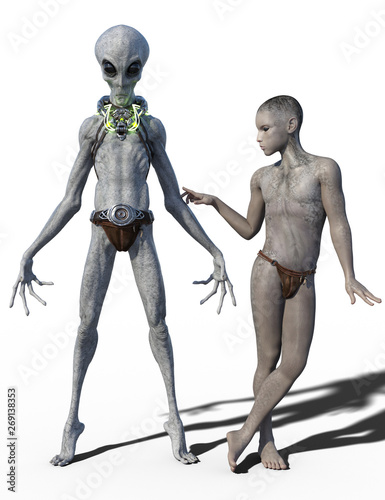 Canvas Print 3d render of two grey aliens isolated on white