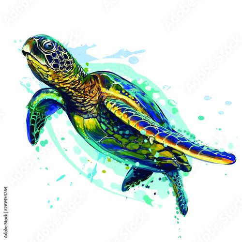 Wallpaper Mural Sea turtle