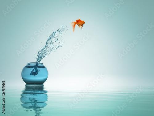 Obraz na płótnie Goldfish jump to the sea