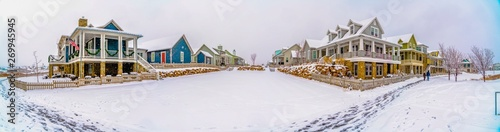 Canvas Print Beautiful homes surrounded by a frosty terrain under the cloudy sky in winter