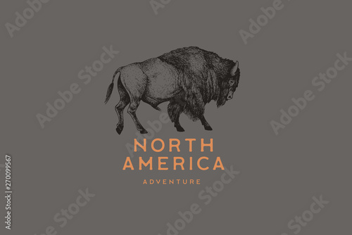 Hand drawing of American bison in retro engraving style Fototapete
