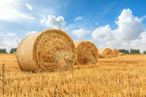 Valokuva Straw bales on farmland with blue cloudy sky