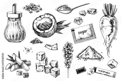 Fototapeta Hand drawn sugar icons set