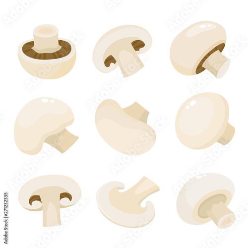 Photo Cartoon vector icon illustration of mushroom champignon isolated on white