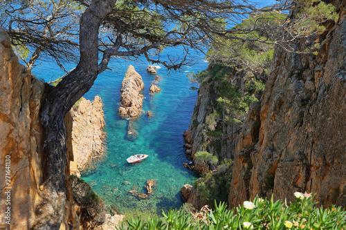 Valokuvatapetti View of the little inlet near Sagaro in Costa Brava, Spain