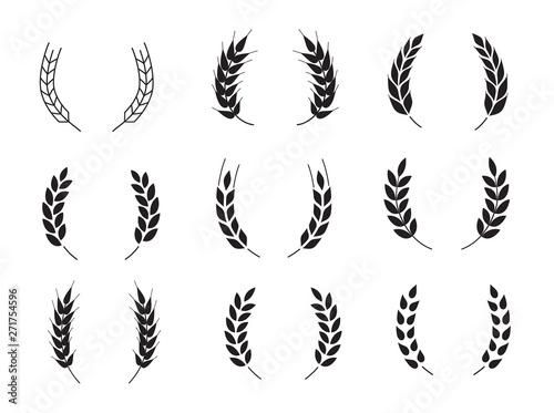 Canvas Wheat grains of different shapes set