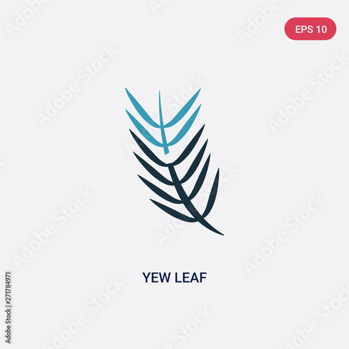 Obraz na płótnie two color yew leaf vector icon from nature concept