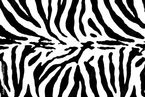 Carta da parati Zebra texture vector
